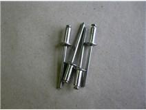 DIN 7337 3,0x 6 nýt trhací hliníkový blistr