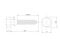 DIN 571 Zn 10,0x120 vrut 6HR hlava